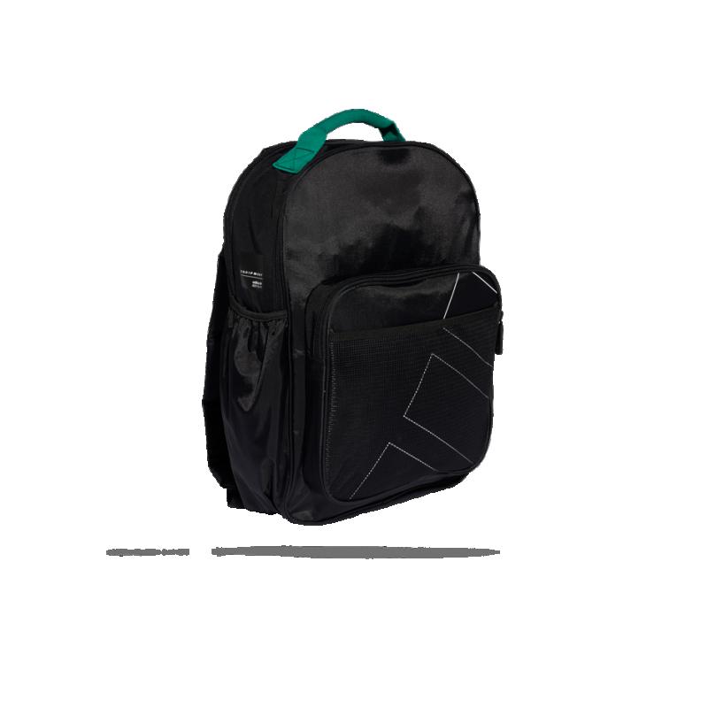 e76e605ec2 adidas Classic Backpack EQT Rucksack (DH3027) in Schwarz