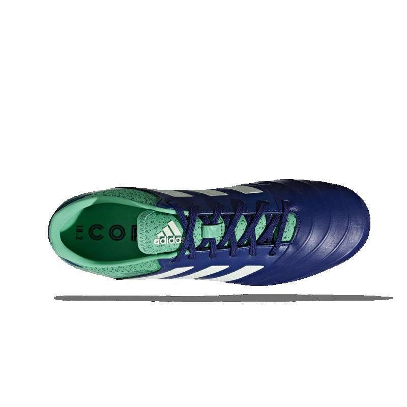 cd843b29ecc ... adidas COPA 18.2 FG (CP8955) - Blau ...