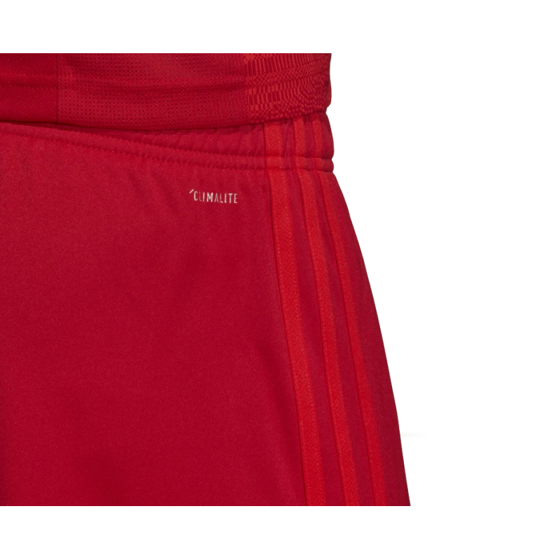 adidas fc bayern m nchen short home 19 20 dw7399 in rot. Black Bedroom Furniture Sets. Home Design Ideas