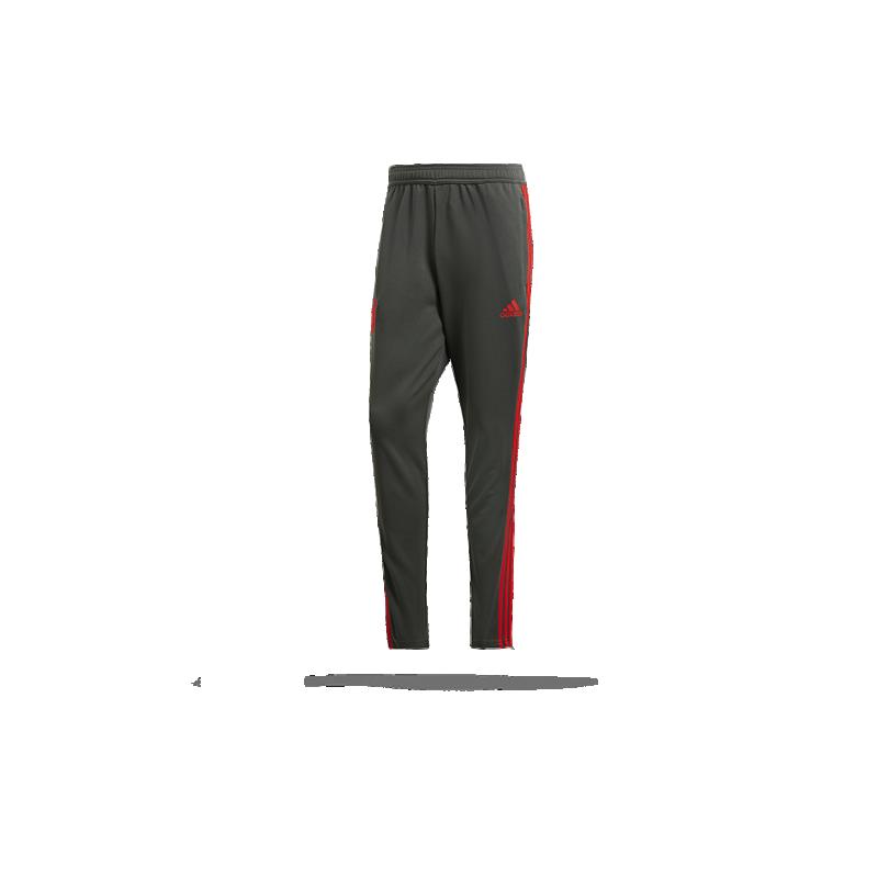 adidas FC Bayern München Training Pant (CW7260) - Grau