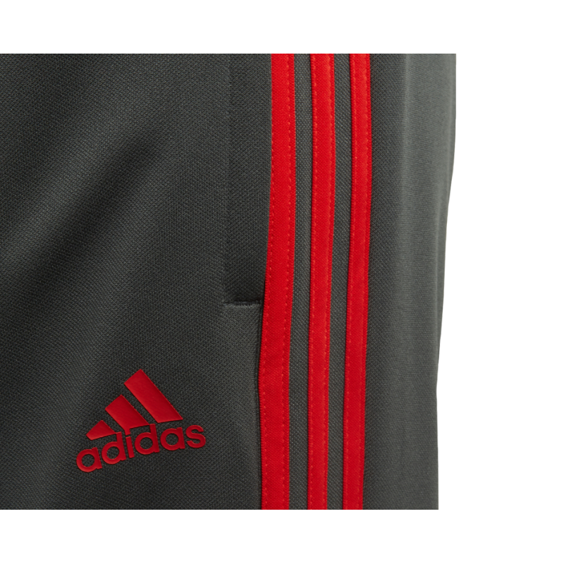 adidas FC Bayern München Training Pant Kinder (CW7293)
