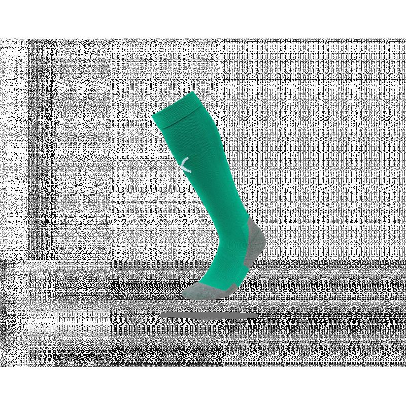 PUMA LIGA Socks Core Stutzenstrumpf (005) - Grün