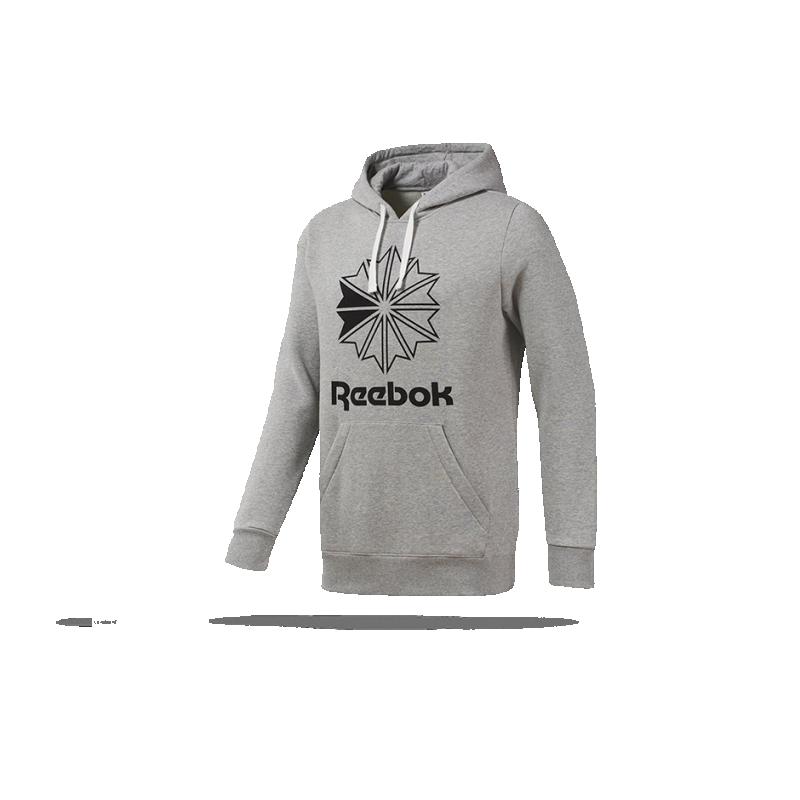 REEBOK Classics Big Logo Hoodie Kapuzensweatshirt (DT8131) - Grau