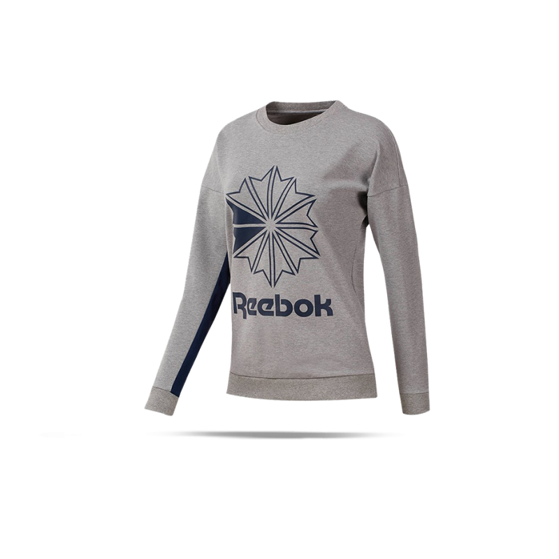 REEBOK Classics FT Big Logo Sweatshirt Damen (DT7243) - Grau
