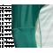 adidas AdiPro 18 Torwarttrikot langarm (CV6352) - Grün