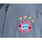 adidas FC Bayern München Präsentationsjacke (CW7305) - Grau