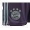 adidas FC Bayern München Short Away 18/19 (CF5406) - Lila