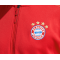 adidas FC Bayern München Z.N.E. Anthem Jacket (CY6107) - Rot