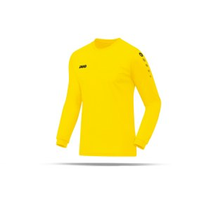 jako-team-trikot-langarm-gelb-f03-trikot-longsleeve-fussball-teamausstattung-4333.png