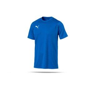 puma-liga-training-t-shirt-blau-f02-shirt-team-mannschaftssport-ballsportart-training-workout-655308.png