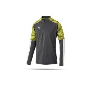 puma-cup-training-1-4-zip-top-grau-f16-fussball-teamsport-textil-sweatshirts-656016.png