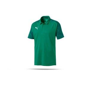puma-cup-sideline-poloshirt-gruen-f05-fussball-teamsport-textil-poloshirts-656047.png