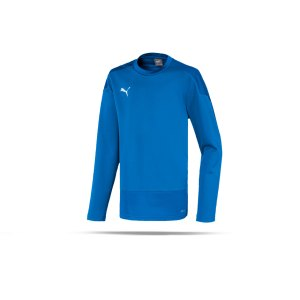 puma-teamgoal-23-training-sweatshirt-kids-blau-f02-fussball-teamsport-textil-sweatshirts-656568.png