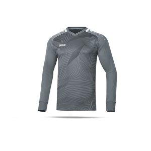jako-goal-torwarttrikot-grau-f40-fussball-teamsport-textil-torwarttrikots-8910.png
