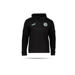 puma-365-football-kapuzensweatshirt-schwarz-f01-656822-fussballtextilien_front.png