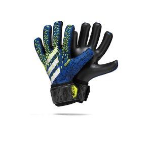 adidas-predator-lge-torwarthandschuh-schwarz-blau-gk3541-equipment_front.png