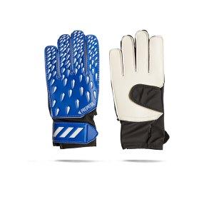 adidas-predator-tw-handschuh-j-kids-blau-weiss-gk3546-equipment_front.png