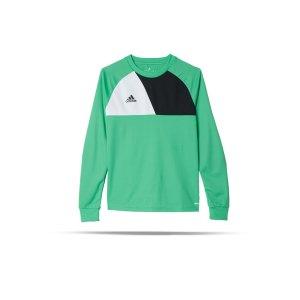 adidas-assita-17-langarm-shirt-kids-gruen-weiss-fussball-teamsport-textil-torwarttrikots-az5406.png