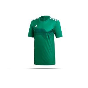adidas-campeon-19-trikot-gruen-weiss-fussball-teamsport-textil-trikots-dp6811.png