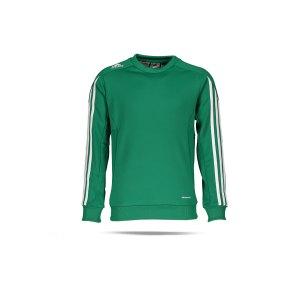 adidas-climacool-mt14-sweatshirt-kids-costum-gruen-d83229-fussballtextilien_front.png