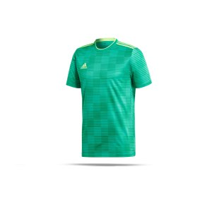 adidas-condivo-18-trikot-kurzarm-gruen-fussball-teamsport-football-soccer-verein-cf0683.png