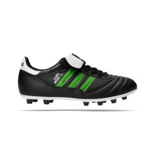 adidas-copa-mundial-fg-green-stripes-schwarz-015110gs-fussballschuh_right_out.png