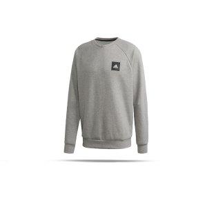 adidas-crew-sweatshirt-grau-schwarz-fussball-textilien-sweatshirts-fi4042.png