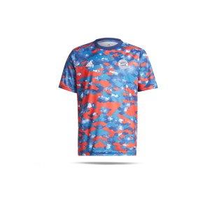 adidas-fc-bayern-muenchen-prematch-shirt-21-22-k-bl-gr0635-fan-shop_front.png