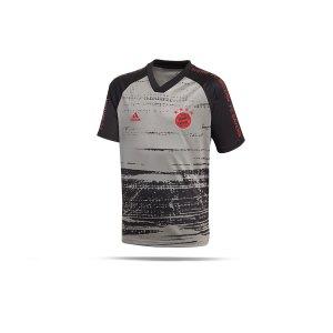 adidas-fc-bayern-muenchen-prematch-shirt-kids-grau-replicas-t-shirts-national-fi6230.png