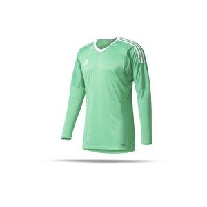 adidas-revigo-17-torwarttrikot-goalkeeper-gruen-weiss-teamsport-mannschaft-ausstattung-spielkleidung-match-training-az5395.png