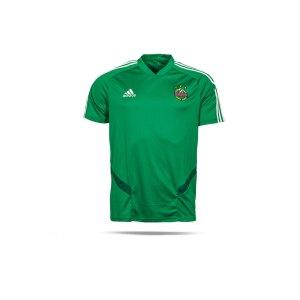 adidas-sk-rapid-wien-trainingstrikot-gruen-replicas-t-shirts-national-DW4810.png