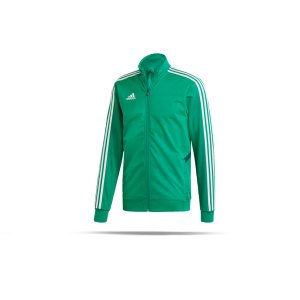 adidas-tiro-19-trainingsjacke-gruen-weiss-fussball-teamsport-textil-jacken-dw4794.png