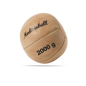 cawila-leder-medizinball-pro-20-kg-braun-1000614305-equipment_front.png