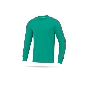 jako-striker-2-0-torwarttrikot-kids-tuerkis-f24-fussball-teamsport-textil-torwarttrikots-8905.png