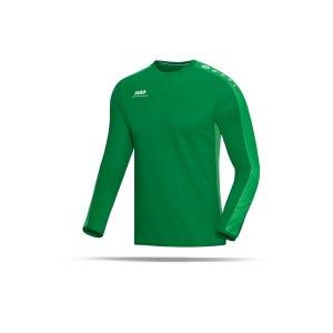 jako-striker-sweatshirt-herren-teamsport-ausruestung-mannschaft-f06-gruen-8816.png