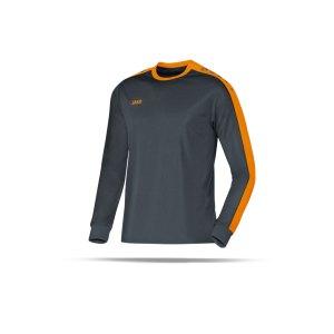 jako-striker-trikot-langarm-grau-f21-jersey-teamsport-vereine-mannschaften-men-herren-maenner-4306.png