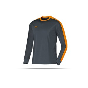 jako-striker-trikot-langarm-kids-grau-f21-jersey-teamsport-vereine-mannschaften-kinder-children-4306.png