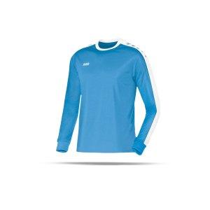 jako-striker-trikot-langarm-kids-hellblau-f45-jersey-teamsport-vereine-mannschaften-kinder-children-4306.png