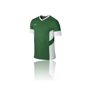 nike-academy-14-trainings-top-t-shirt-men-herren-erwachsene-gruen-f302-588468.png