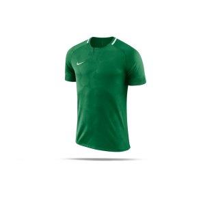 nike-dry-challenge-ii-trikot-kurzarm-kids-f341-trikot-kurzarm-shirt-fussball-mannschaftssport-ballsportart-894053.png