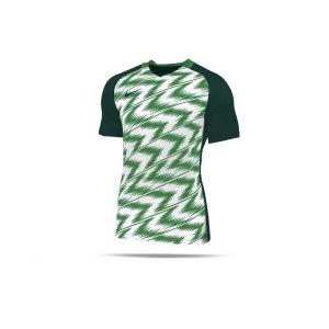 nike-naija-trikot-kurzarm-kids-gruen-weiss-f302-fussball-teamsport-textil-trikots-ci9791.png
