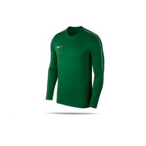 nike-park-18-crew-top-sweatshirt-kids-gruen-f302-top-langarm-sweatshirt-mannschaftssport-ballsportart-aa2089.png