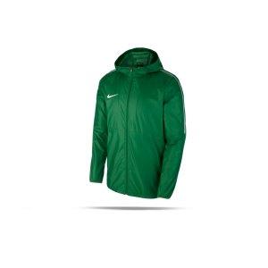 nike-park-18-rain-jacket-regenjacke-gruen-f302-regenjacke-jacket-mannschaftssport-ballsportart-aa2090.png