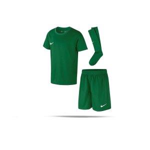 nike-dri-fit-park20-babykit-gruen-f302-fussball-teamsport-textil-trikots-cd2244.png