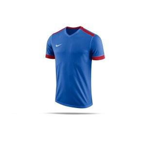 nike-dry-park-derby-ii-trikot-blau-rot-f463-trikot-shirt-team-mannschaftssport-ballsportart-894312.png