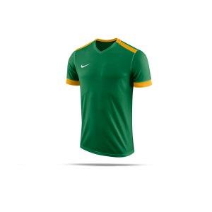nike-dry-park-derby-ii-trikot-kids-f302-trikot-shirt-team-mannschaftssport-ballsportart-894116.png