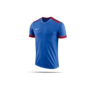 nike-dry-park-derby-ii-trikot-kids-f463-trikot-shirt-team-mannschaftssport-ballsportart-894116.png