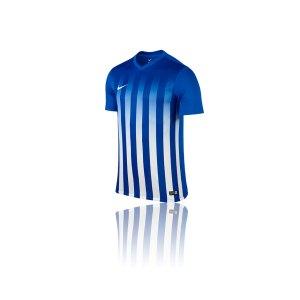 nike-striped-division-2-trikot-kurzarm-vereinsausstattung-teamsport-sportbekleidung-blau-f463-725893.png