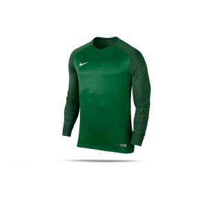 nike-trophy-iii-dry-team-trikot-langarm-gruen-f302-trikot-vereinsausstattung-maenner-men-longsleeve-fussball-833048.png