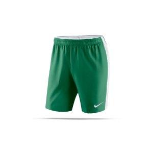 nike-dry-venom-ii-short-gruen-weiss-f302-herren-hose-short-teamsport-mannschaftssport-ballsportart-894331.png